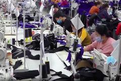 Cần minh bạch phí cảng biển, giảm gánh nặng cho doanh nghiệp dệt may