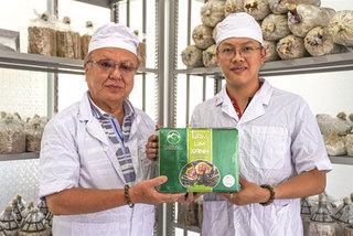 Sustainable farmingboostsQuang Nam's magic mushrooms