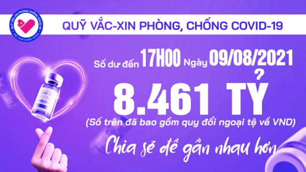 17h ngày 9/8: Quỹ vắc xin tăng thêm 2 tỷ, đạt 8.461 tỷ đồng