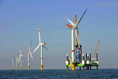 Pandemic challenges wind power projects in Mekong Delta