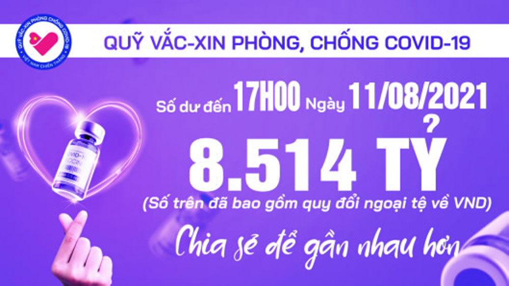 17h ngày 11/8: Quỹ vắc xin tăng thêm 52 tỷ, đạt 8.514tỷ đồng