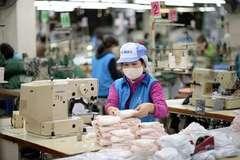 Đưa hàng Việt thẳng tiến vào thị trường EU