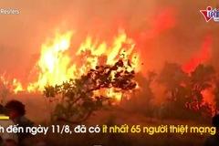 Hàng chục người chết vì cháy rừng ở Algeria, hỏa hoạn bùng phát ở Italia