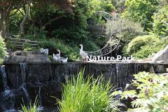 Cảm nhận hơi thở 'rừng xanh' ở công viên Thiên nhiên Daegu
