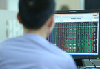 VN stock market could be at beginning of multi-decade growth