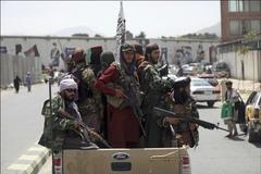 Taliban và lực lượng kháng chiến Afghanistan chịu thương vong lớn