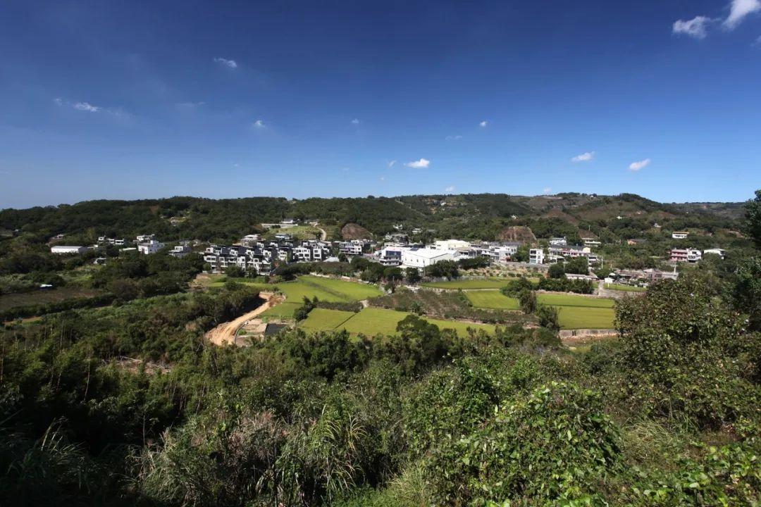 24 gia đình góp 500 tỷ mua 8.000m2 đất hoang xây làng 'biệt phủ'