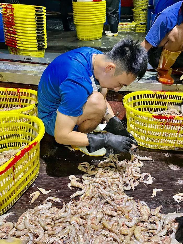 V-League huỷ: Cầu thủ đi bán hải sản, gom giấy vụn