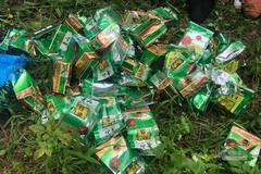 Trang bị súng ngắn để xách 46kg ma túy đá từ Lào về Việt Nam