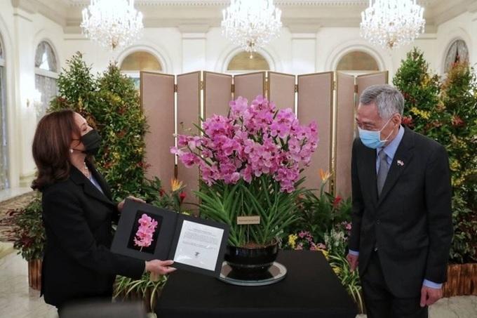 Phó Tổng thống Mỹ thăm Việt Nam 3 ngày theo lời mời của Phó Chủ tịch nước