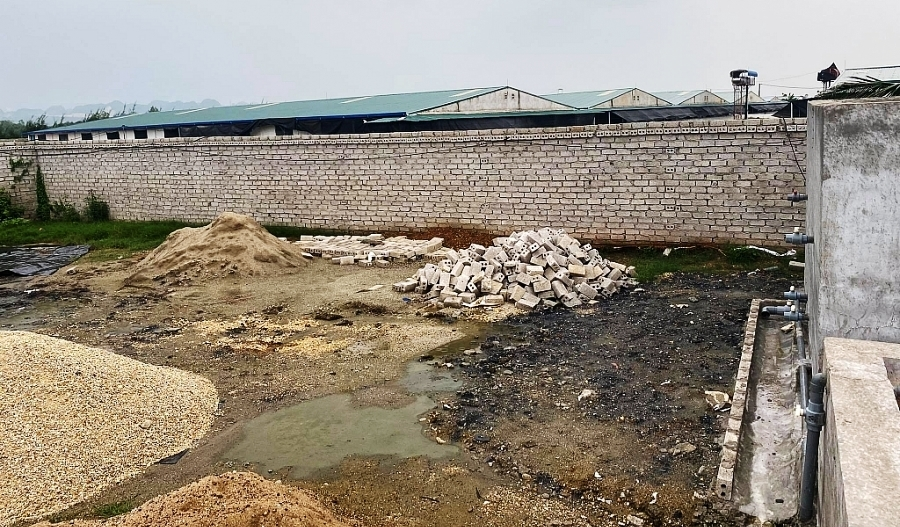 Một xã ở Thanh Hóa có 5 trang trại lợn, lo nguy cơ gây ô nhiễm
