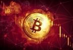 Trong đêm bitcoin mất 10.000 USD, cú sụt gây choáng váng
