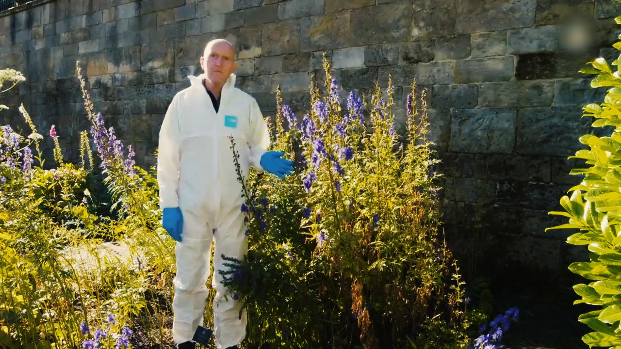 Khám phá khu vườn độc dược 'động đâu chết đấy' ở Anh