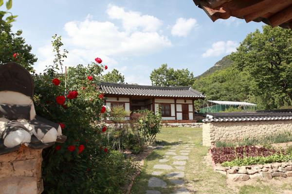 Trải nghiệm khó quên tại di sản Hanok 400 năm tuổi ở Daegu