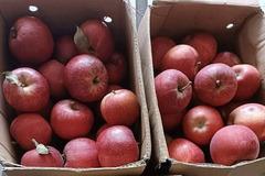 Nhập khẩu nông sản Trung Quốc về Việt Nam tăng rất mạnh