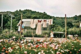 Cặp đôi bỏ phố về ngọn đồi không điện lưới, dựng 'Đà Lạt thu nhỏ' đẹp mê hồn