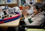 Robot bầu bạn với người già cô đơn tại Nhật Bản