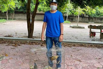 Công an TP Vinh truy bắt người đàn ông trộm 2 con chim nhà dân