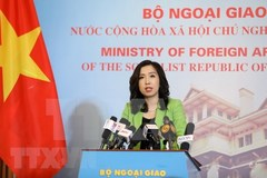 VN resolutely protects sovereignty over islands: Foreign Ministry spokesperson