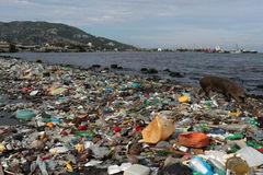 Mỗi năm có gần 12 triệu tấn rác thải nhựa thải ra đại dương