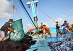 The 'test' for the future of seafood exports