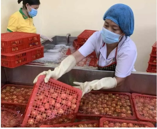 Europe recovers, opening up great opportunity for Vietnamese goods