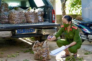 Ngay Hà Nội, giải cứu nhãn rẻ chưa từng có, 10 nghìn/kg không ai mua