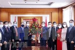 Vietnam enjoys rising position in international arena: Ambassador