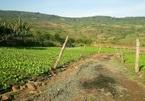 Thủ tục chuyển đất thổ canh sang thổ cư năm 2021
