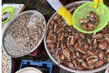 Hải sản giảm giá một nửa, thịt gà 6.000 đồng/kg vẫn ế ẩm