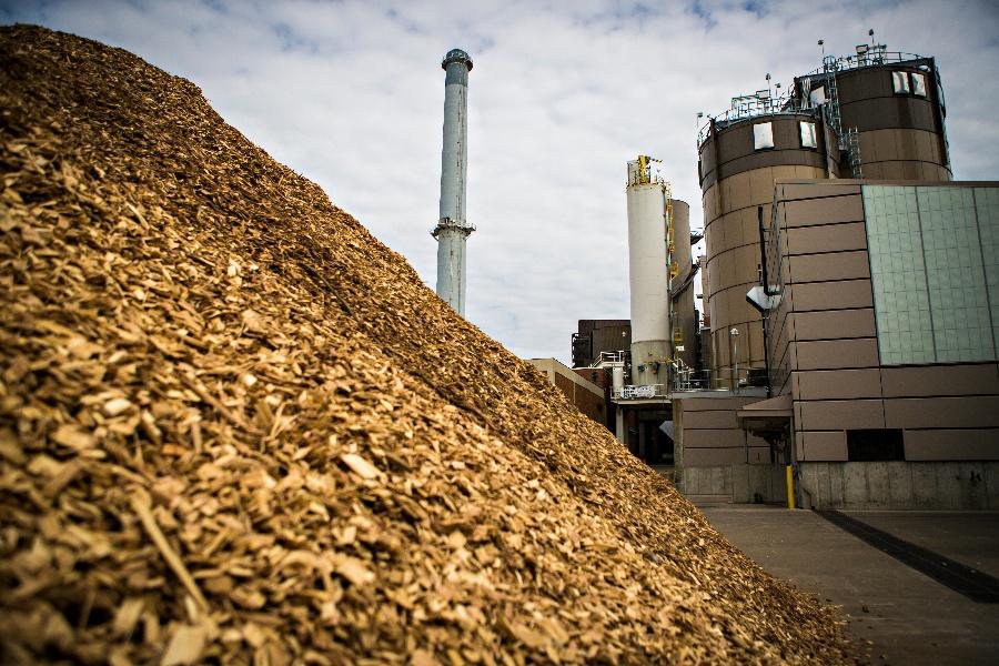 11 nhà máy đường tham gia sản xuất, bán điện lên lưới quốc gia từ việc sử dụng bã mía