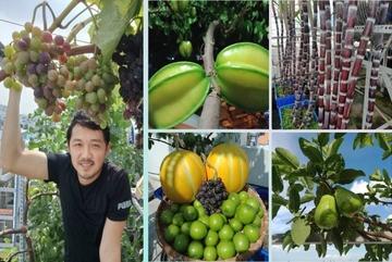 Ông bố ở TP.HCM trồng mía và đủ loại cây ăn trái trên sân thượng
