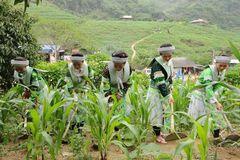 Thái Nguyên: Quy định vùng tạo nguồn cán bộ cho các dân tộc thuộc diện tuyển sinh vào các trường nội trú