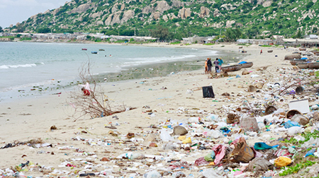 Môi trường biển bị tác động xấu do ô nhiễm chất hữu cơ và dầu mỡ