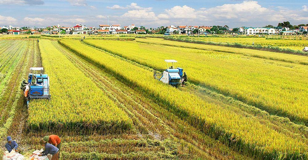 Thái Bình: Xây dựng các giải pháp dài hơi để ổn định đời sống người dân, đảm bảo các mục tiêu phát triển