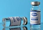 Lý do vắc xin Pfizer ít tác dụng phụ hơn