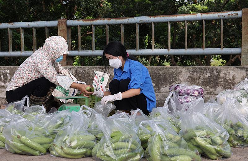 Thủ tướng: Hỗ trợ kết nối đầu ra cho nông sản ở nơi giãn cách xã hội