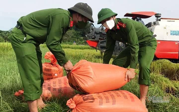 Công an Thanh Hóa thay dân gặt lúa 'chạy đua' với bão Côn Sơn