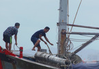 Cách ly tập trung hàng trăm ngư dân vào bờ tránh bão