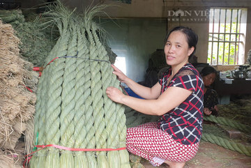 Độc lạ Việt Nam: Suốt 20 năm bện 'đuôi trâu' khổng lồ xuất đi Nhật