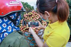 Từ ngôi làng nhỏ Việt Nam thành tay bán buôn xuyên biên giới
