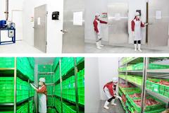 Hà Nội: Công ty Thanh Nga cung cấp thịt trở lại