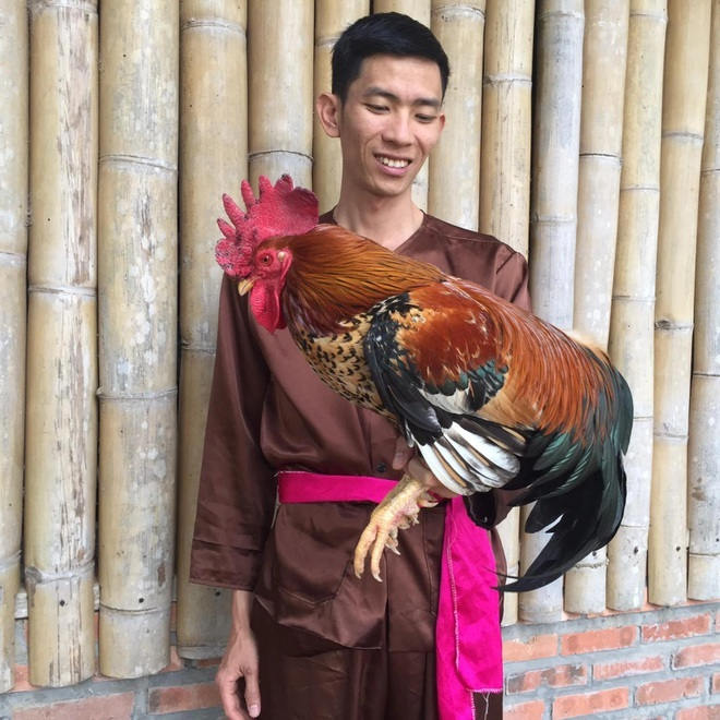8X người Mường bỏ nghề giáo về quê 'hốt bạc' từ nuôi gà 9 cựa