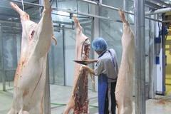 Hòa Bình: Tăng cường nhiều biện pháp bảo vệ đàn gia súc trước nguy cơ dịch bệnh dễ bùng phát
