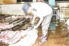 Quảng Trị: Quản chặt công tác giết mổ, tiêu thụ động vật, góp phần đảm bảo an toàn dịch bệnh cho đàn gia súc