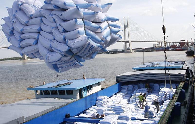 Mở 'luồng xanh' đường thuỷ nội địa khơi thông vận chuyển lúa, gạo