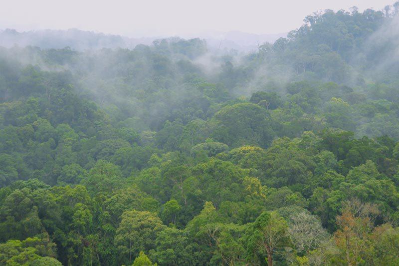 UNESCO công nhận thêm 2 khu dự trữ sinh quyển thế giới ở Việt Nam