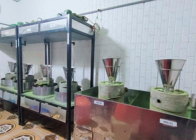 Bỏ phố về quê làm bột rau, 8X Hải Phòng thu tiền tỷ mỗi năm