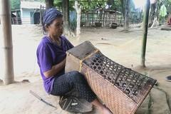 Basketry dreams of a brighter future