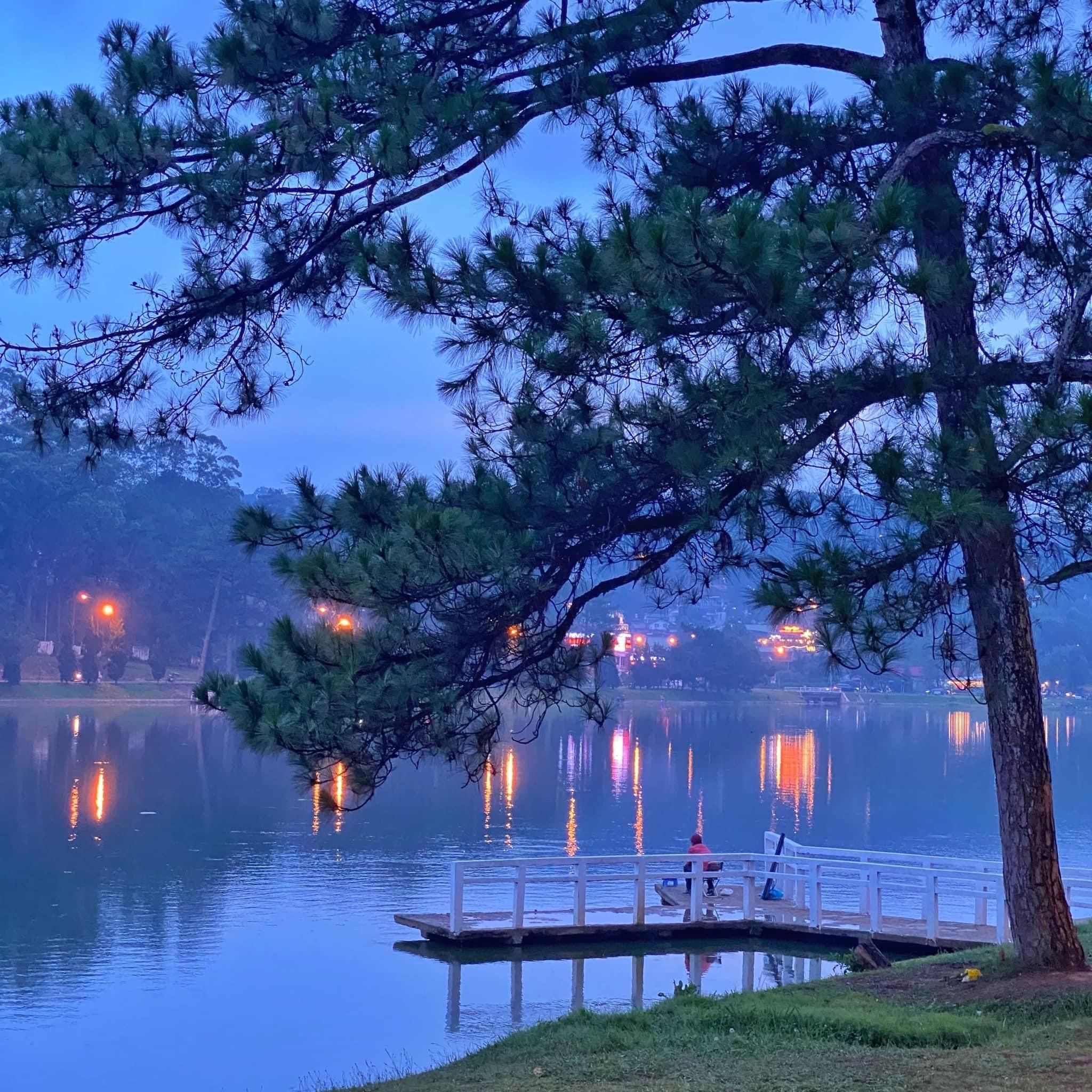 Biển mây mờ ảo như tiên cảnh ở Đà Lạt những ngày tháng 9